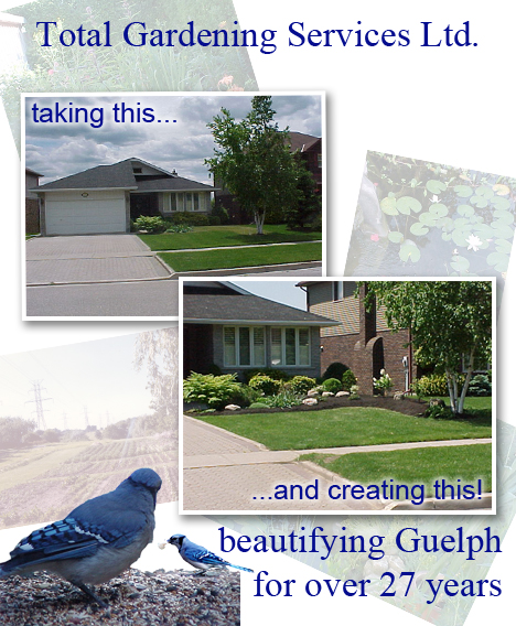 Guelph Landscaping